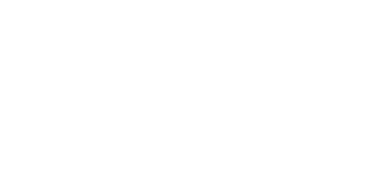 KnipsMA